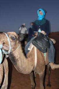 stephen on a donkey